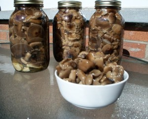 Рецепты консервирования грибов на зиму в банках