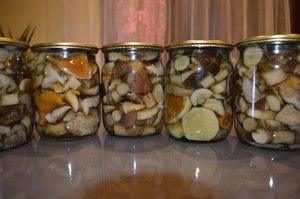 Рецепты консервирования грибов на зиму