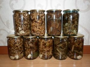 Как можно закрыть грибы на зиму в банки.