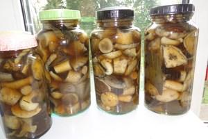 Как правильно мариновать грибы