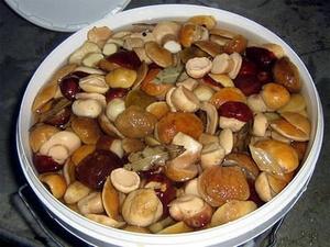 Как правильно готовить соленые грибы