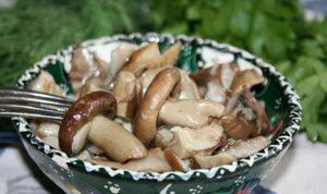 как засолить грибы рядовки