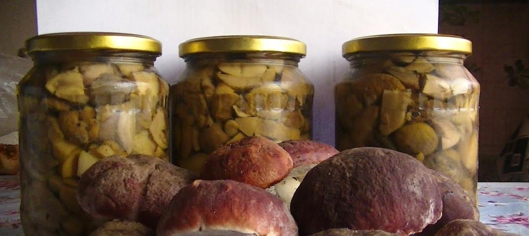 Соленые грибы покрылись плесенью – что делать?